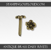Antique Brass Daisy Rivets