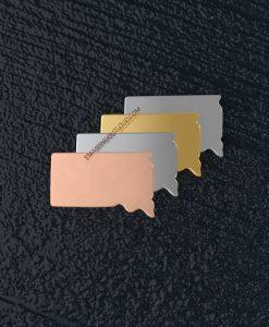 South Dakota State Stamping Blank